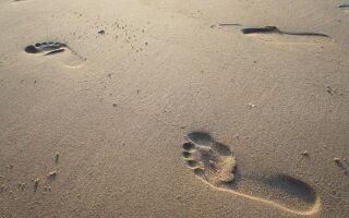 Вправи лікувальної гімнастики при парезі ступні