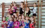 Загальні вимоги безпеки при проведенні занять по гімнастиці в школі