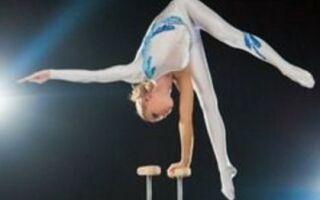 Палки-стоялки для гімнастичних та акробатичних вправ